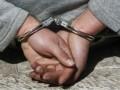В Тернопольской области двое мужчин похитили с фермы трех ягнят, чтобы приготовить шашлык