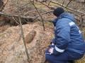 В зоне отчуждения ЧАЭС нашли бомбу