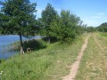 В Житомирской области рыбалка закончилась стрельбой
