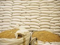 В Украине увеличился экспорт зерновых