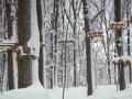 В парке Софиевка на неработающей канатной дороге погиб ребенок