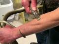 Ради вакцины американец более 160 раз подвергся змеиным укусам