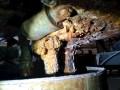 В соцсетях возмущены, как в Козятыне пекут хлеб
