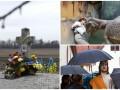 День в фото: памятник Чорноволу, женщина с динозавром и статуя Иисуса под зонтом