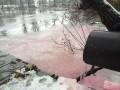 В реку в Киеве сливали опасные химикаты