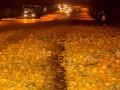 В Днепре в результате ДТП дорогу засыпало мандаринами