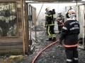 В зоопарке Франции при пожаре сгорели более 60 животных