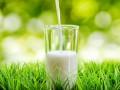 Эксперты назвали марки безопасного молока