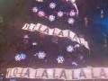 В Сиднее новогоднюю елку украсили гирляндами с надписью