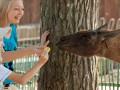 Госаудитслужба проверяет покупку мандаринов Харьковским зоопарком