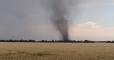 Смерч в Донецкой области уничтожил посевы подсолнечника