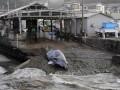 Япония официально покидает китобойную комиссию