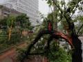 МИД не рекомендует украинцам посещать Японию из-за тайфуна
