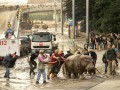 Власти Тбилиси подтвердили гибель 8 человек в результате наводнения