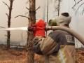 С пожарами в зоне отчуждения борются три недели