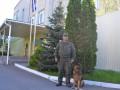 В Южноукраинске служебная собака нашла девочку: ребенок хотел покончить с собой