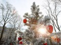 В центре Киева из-за протестов отменили и перенесли новогодние локации