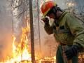 Пожары в Сибири. Рекордные площади, зовут шаманов
