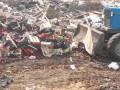 В России в новом году уничтожили почти 20 тыс. тонн санкционной еды