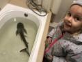 В отеле Одессы произошло ЧП из-за акулы