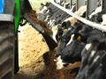 Украина вошла в топ-10 мировых экспортеров молочной продукции