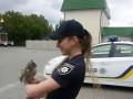 В полиции Ровно