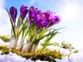 Прогноз погоды на выходные: в Украине похолодает до -10