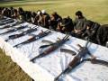 Атаки талибов в трех регионах Афганистана: десятки погибших