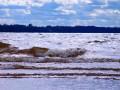 В реках Закарпатья ожидается повышение уровня воды, - ГСЧС