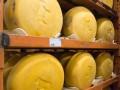 Украинский производитель сыра вынужден приостановить производство из-за запрета РФ