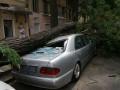 В центре Одессы на Porsche и Mercedes упало дерево