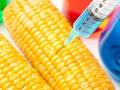 Будь осторожен: До какой еды добралась генная инженерия