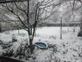 Шел 77-й день февраля: в Харькове и области выпал снег