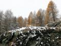 Погода в Украине на 21 февраля: Тепло, на Востоке и Западе возможны осадки