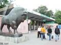 В Киеве на реконструкцию зоопарка выделили200 млн гривен