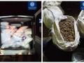 На Житомирщине водитель перевозил 20 мешков янтаря