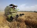 Украина исчерпала квоты на экспорт пшеницы в Евросоюз