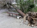Непогода обесточила в Украине 284 населенных пункта