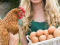Украина запретила импорт птицы из Венгрии и Болгарии
