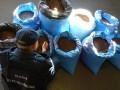 В Польше задержан украинец с крупной партией янтаря