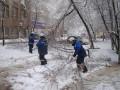 В Москве упавшие при снегопаде деревья разбили более 200 авто