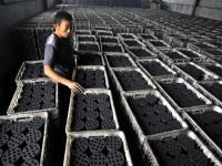 КНДР больше не может продавать Китаю уголь, руду и морепродукты