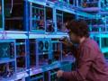 ГБР расследует факты майнинга криптовалют на серверах ГСА