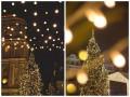 Киевская новогодняя елка пойдет на дрова
