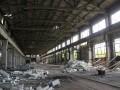 На Донбассе 12 мая погибли 7 российских военных - ГУР