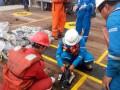 Авиакатастрофа в Индонезии: появились новые подробности