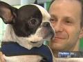 Пилот Air Canada посадил самолет ради спасения собаки