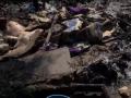 В Запорожье живодеры сожгли живьем щенков
