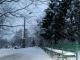 Погода на неделю: по Украине до минус 10, местами снег