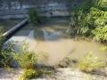 Сбежали даже утки: Крымчане жалуются на загрязнение реки Мелек-Чесме